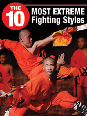 Fighting-Styles