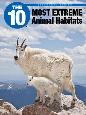 animalhabitats-1